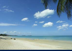General information about Samui